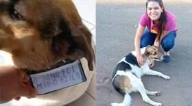 Cachorro é largado com placa: