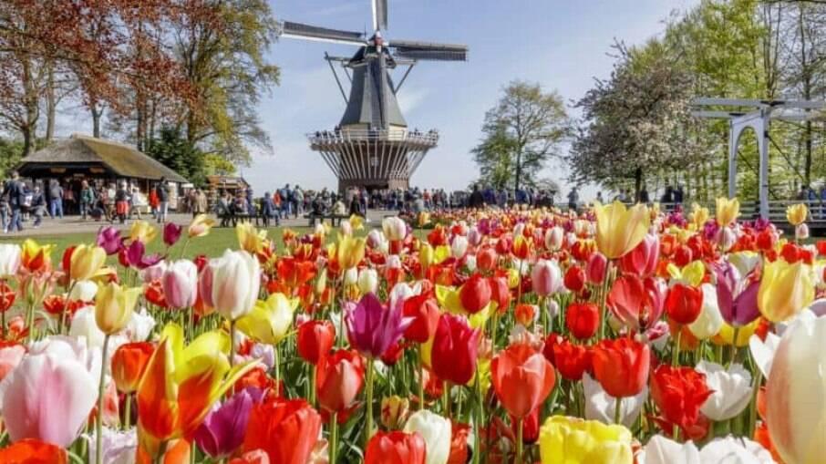 Saiba quais são os jardins mais bonitos do mundo