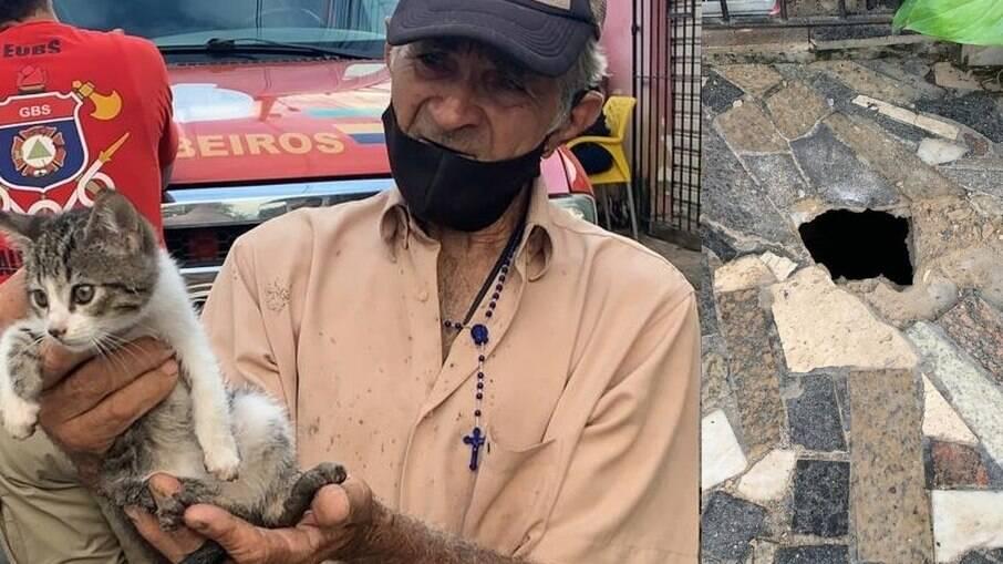 Gato é resgatado por bombeiros após ficar preso sob calçada, em Recife