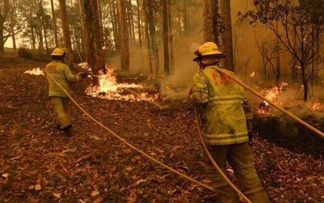 No final de 2019 e no início deste ano, a Austrália passou por uma onda de calor extrema que causou milhares de incêndios florestais