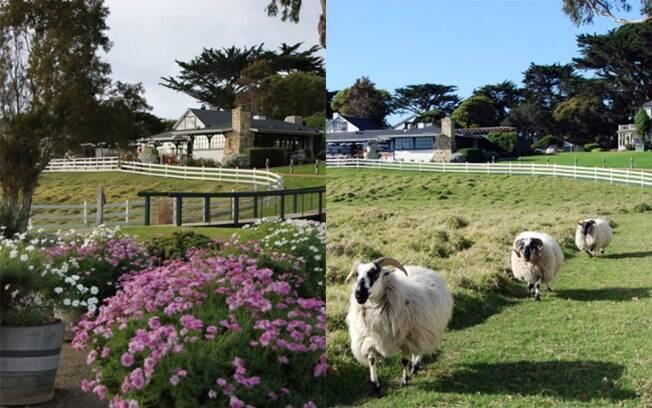 Além de lareiras, quem se hospedar no hotel de Clint Eastwood pode brincar com as ovelhas no pasto