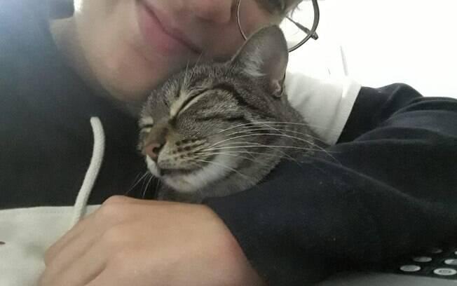 Gatos também podem ter boa relação com tutores durante isolamento