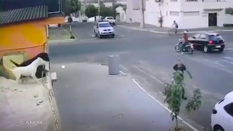 O momento foi registrado por uma câmera de segurança