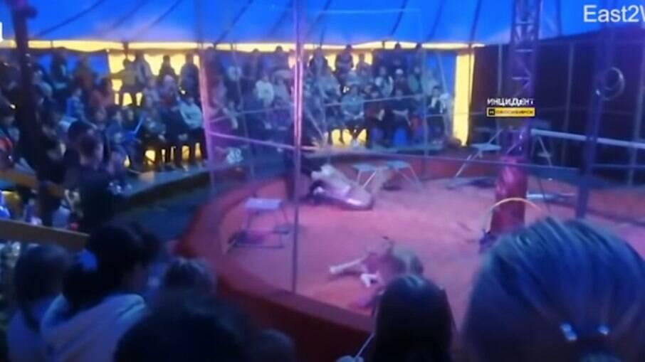 Um domador de circo foi atacado por uma leoa