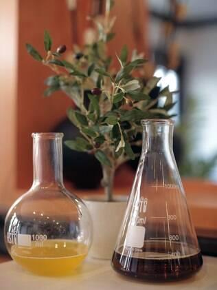 Óleo de oliva, baobá e katafray estão entre os ingredientes dos novos cosméticos