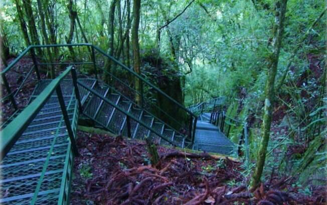 A cascata do Caracol fica dentro do parque homônimo, em Canela. Foto: Divulgação
