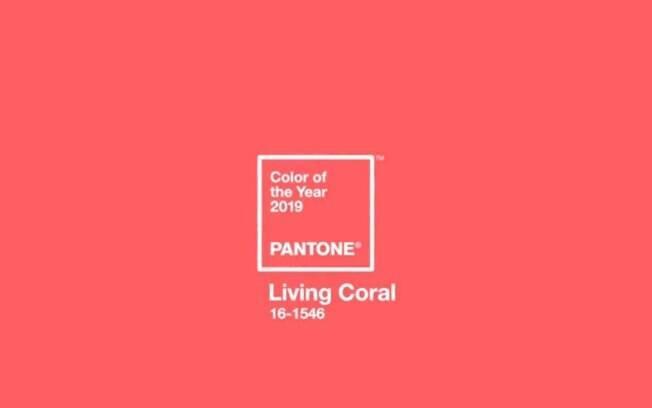 A Pantone divulgou a cor do ano para 2019 e, diferente da escolhida para este ano, ela é mais vibrante e suave; confira
