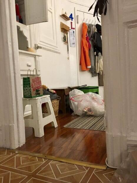Gatinha é especialista em se esconder e os internautas quebram a cabeça para encontrá-la