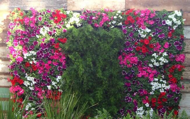 Jardim Vertical 36 ideias criativas para montar o seu  Jardinagem