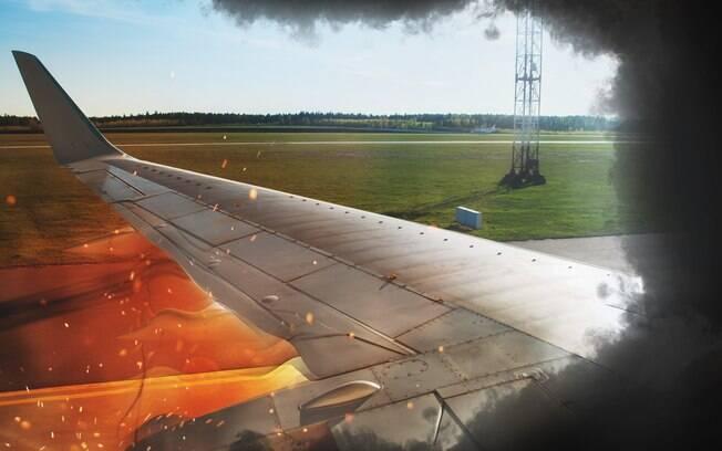 O voo 312 da companhia aérea Swoosh foi obrigado a fazer um pouso forçado após gansos danificarem a turbina do avião