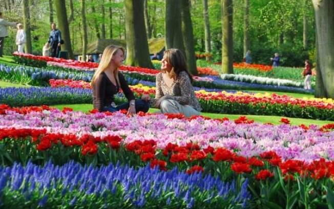 Parque Keukenhof, na cidade holandesa de Lisse, fica aberto até o mês de maio
