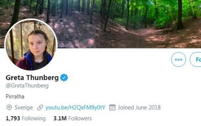 perfil no Twitter de Greta Thunberg