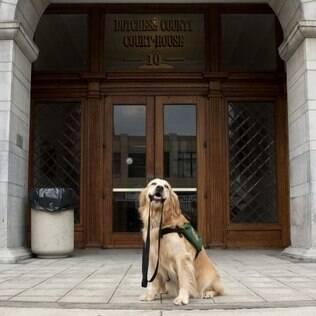 Rosie posa do lado de fora de um tribunal em NY