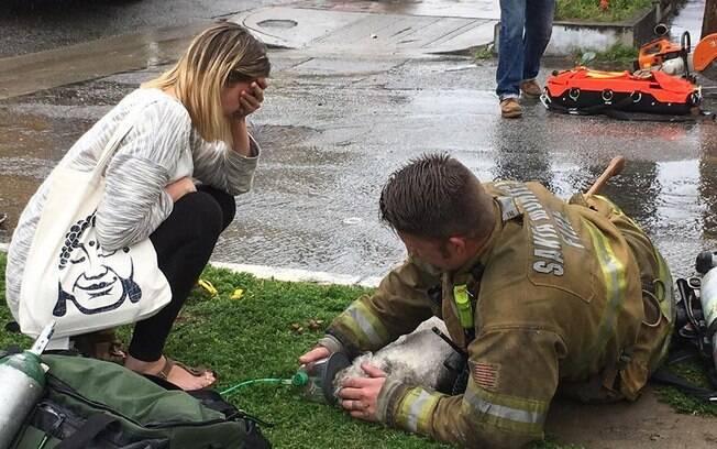Bombeiro se recusa a desistir de cão que estava em incêndio!