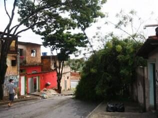 Cidades - Belo Horizonte - MG Arvore cai em fiacao e muro de casa no Jardim Vitoria  FOTO: FERNANDA CARVALHO / O TEMPO - 15.12.2014