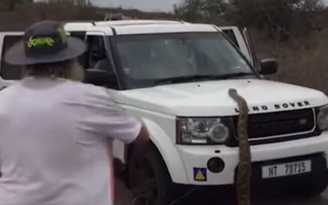 Imagens mostram momento em que cobra investe contra um dos carros que estavam no local