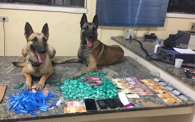 Drogas apreendidas pelos Cães Dilan e Draika durante operação do Canil da PM
