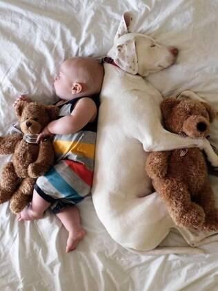 Dormir agarradinho é uma das principais manias do dono de cachorro