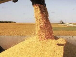 Escassez de crédito reduzirá safra de grãos, que será de 10 mi/ton este ano