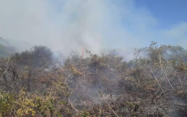 Incêndio no Pantanal já dura seis dias