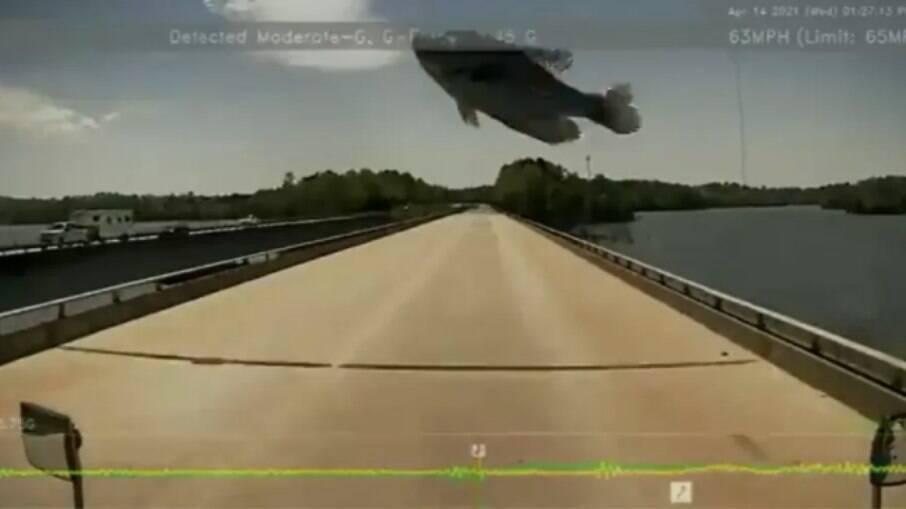 Peixe caiu sobre o vidro frontal de motorista nos Estados Unidos