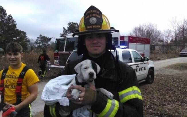 Um cachorro sendo salvo por um bombeiro.