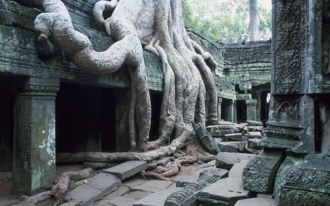 Raízes gigantes cobrem o templo de Ta Prohm