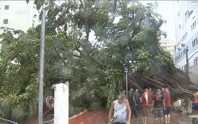 A Baixada Santista foi atingida por um temporal com fortes ventos que provocaram quedas de árvores