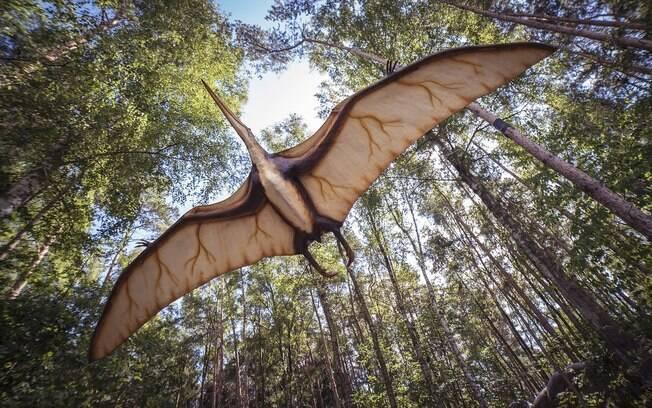 Mais de 300 ovos fossilizados de dinossauros pterossauros foram encontrados por paleontólogos brasileiros e chineses
