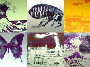 Com 70 micrômetros quadrados, cada imagem é menor do que a espessura de um fio de cabelo