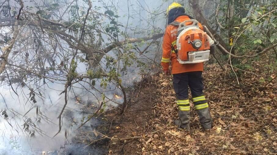 Combate ao fogo na segunda-feira no Pantanal mato-grossense, km100 da Transpantaneira