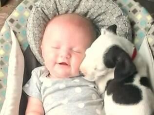 Imagens de bebê e filhote de pitbull encantam internautas.