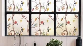 Veja 8 opções para substituir as cortinas comuns em sua casa