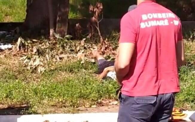 Homem leva choque ao tentar pegar abacate em árvore de Sumaré