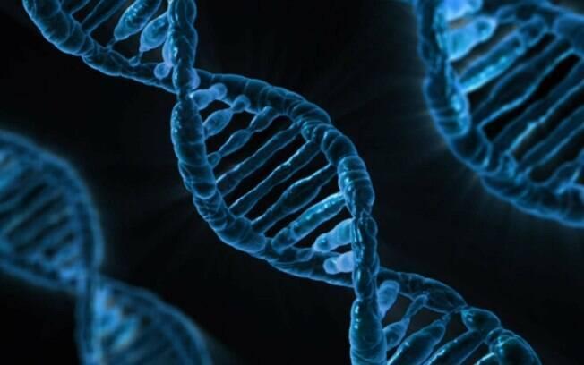 Não foi possível determinar a paternidade exata porque não há diferença entre código genético de gêmeos idênticos