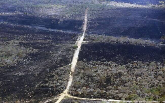 Incêndio já consumiu 26% do Parque Nacional da Chapada dos Veadeiros