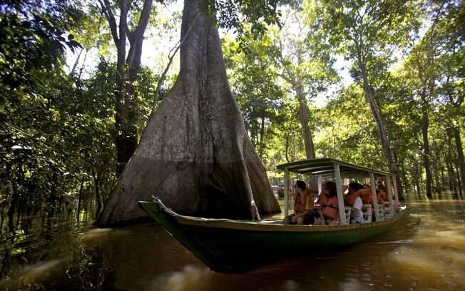 Passeio pelo rio Amazonas é uma das principais atrações em Manaus