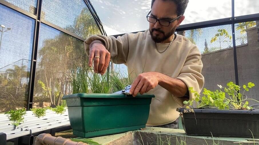 Luciano Camargo comemora sua primeira colheita com seguidores nas redes sociais