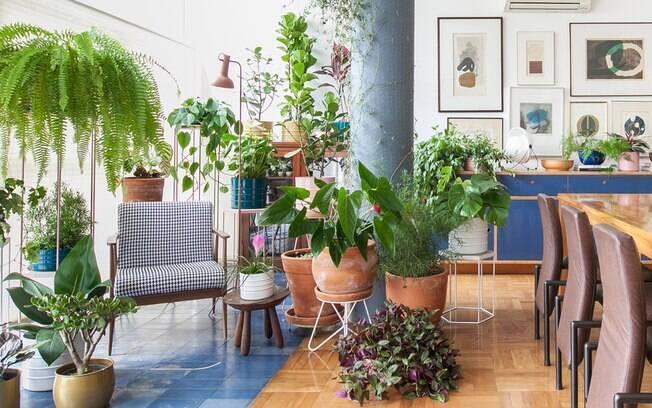 Para adotar a decoração com plantas é possível fazer uma combinação de vasos para sala