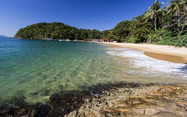 As águas de diversas praias de Ilha Grande são propícias para a prática de mergulho e snorkeling, então fique ligado