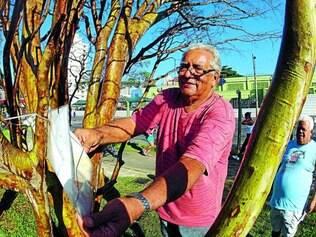 Sucesso. Desde que Otávio começou a cuidar do parque, já foram plantadas oito jabuticabeiras