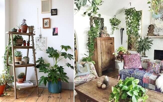 Em salas e quartos, é possível ter prateleiras apenas para as plantas ou posicioná-las em locais inusitados