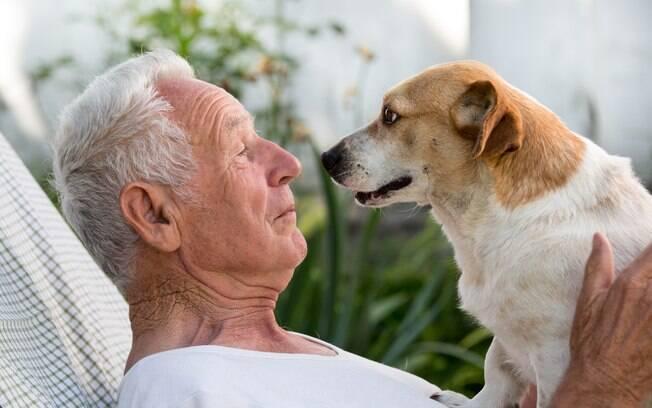 A convivência entre idosos e animais de estimação pode diminuir a depressão