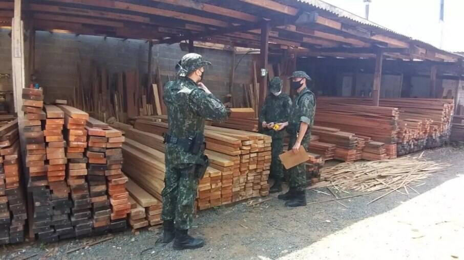 Mais de 53 metros cúbicos de madeiras foram apreendidas pela Policia Ambiental.