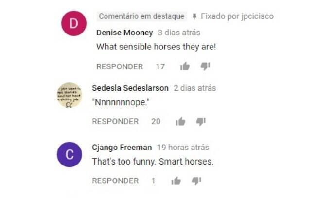 Os comentários são os mais diversos a respeito da reação dos cavalos