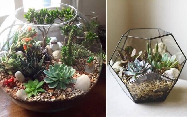 Terrários podem ser feitos em recipientes com formatos diferentes e até enfeitados com miniaturas