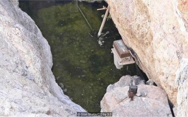 A espécie vive isolada há milhares de anos em uma caverna do derserto de Mojave, nos EUA