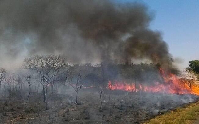 Queimadas neste período seco e baixa umidade contribuem com incêndios