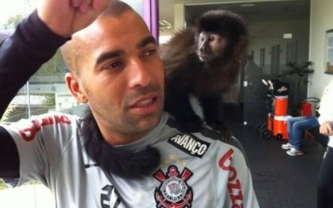 Emerson Sheik e sua macaca de estimação,  Cuta