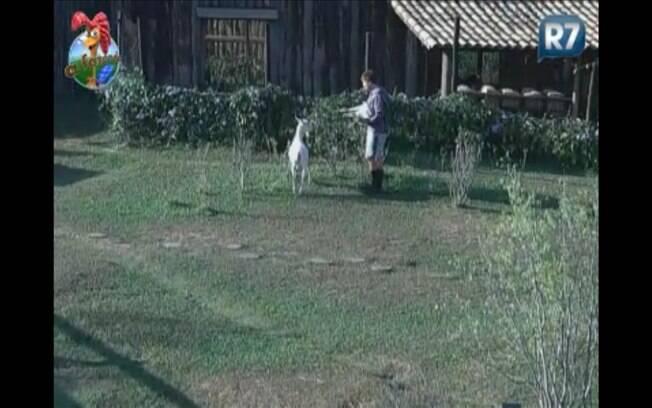 Thiago tenta convencer Chibalda a descer para o pasto, mostrando filha no colo